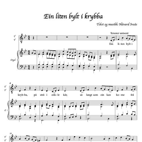 Ein liten bylt i krybba TTBB/orgel