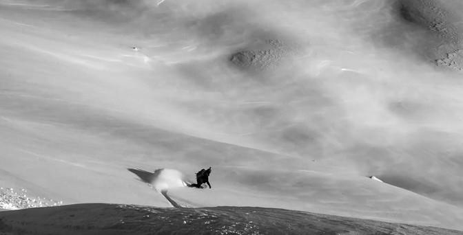 ingrid cruiser ned en urørt fjellside
