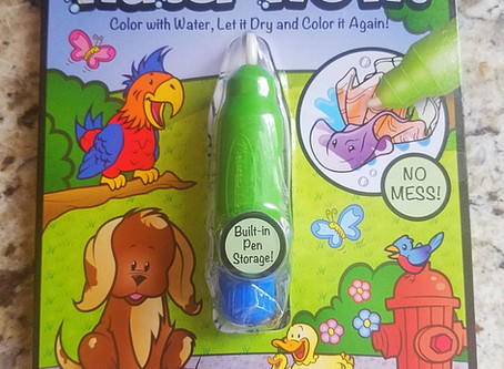 "Craft Time - No Mess ""Painting""  Melissa & Doug On the Go Water Wow!"