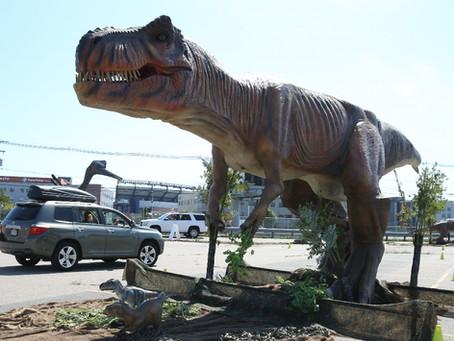 Gillette Stadium Hosting Jurassic Quest Dinosaur Exhibit Drive-thru