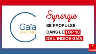 Synergie dans le Top 10 des meilleures performances en RSE, selon l'indice de référence Gaïa.