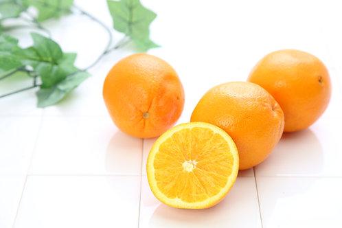 【輸入】オレンジ(25玉)