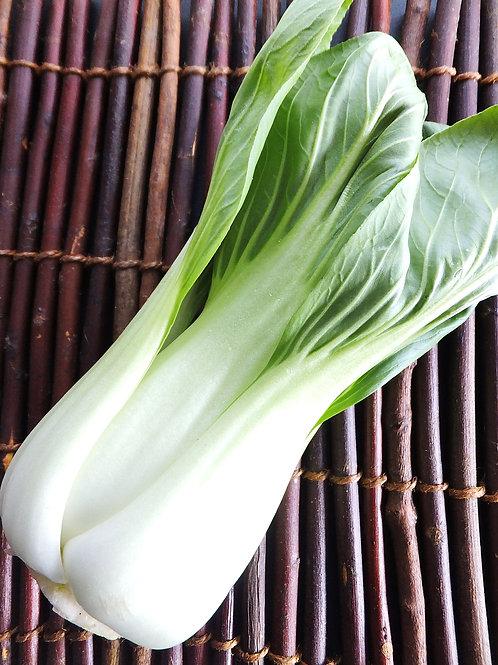 【熊本県産】チンゲン菜(10パック)