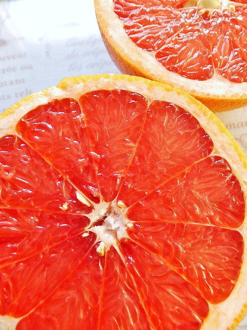 【輸入】グレープフルーツ 赤(10玉)
