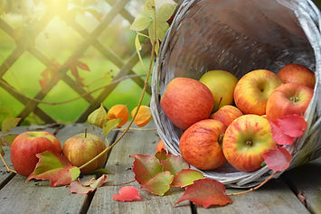 Herbst_Ernte.jpg