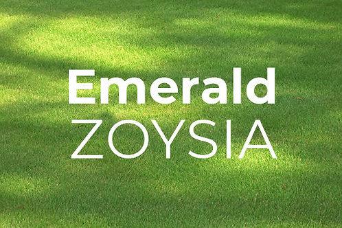 Full Pallet Emerald Zoysia