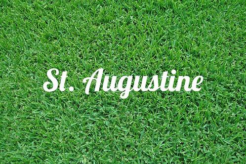 Full pallet of St Augustine