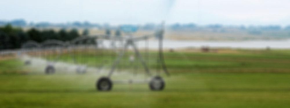 banner-sod-farm-sprinkler_edited.jpg