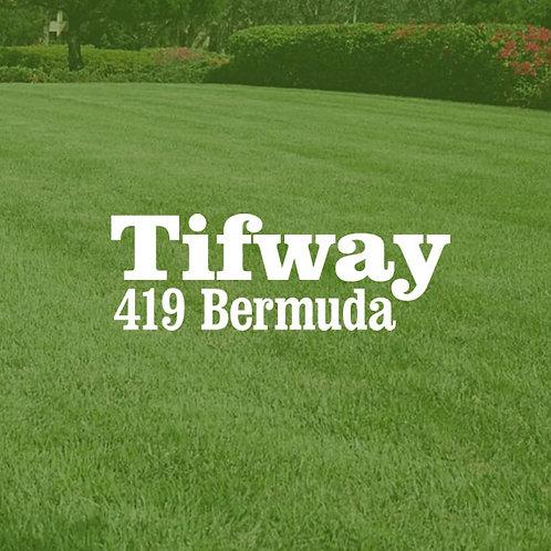 Full Pallet 419 Bermudagrass