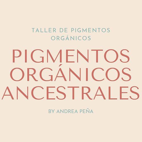 Taller de Pigmentos Orgánicos Ancestrales