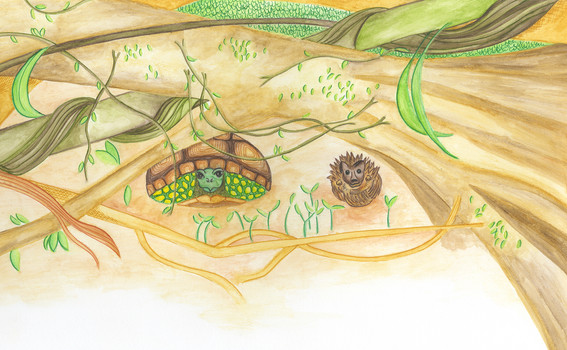 Slow-Solid and Stickly-Prickly hide under a fallen tree.