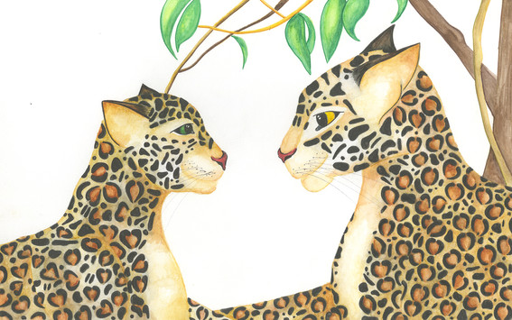 Mother and Painted Jaguar under the tree.