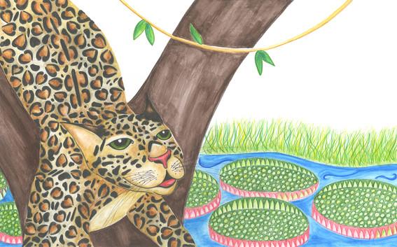 Painted Jaguar hunting.
