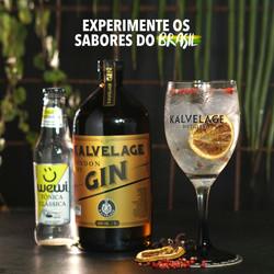 Gin kalvelage Cuiabá
