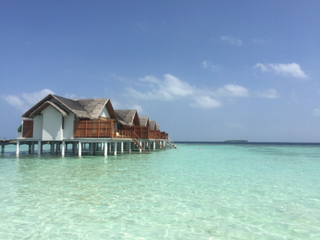 Honeymoon Guide: The Maldives, Borneo and Kuala Lumpur