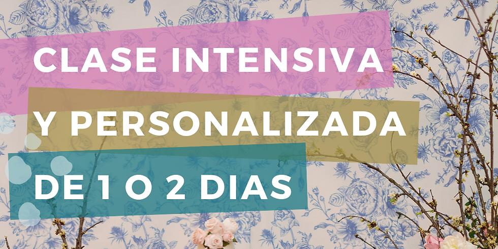 INTENSIVO Y SEMI PRIVADO DE 1 Ó 2 DIAS EN MIAMI