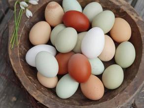 So entstehen natürlich bunte Eier