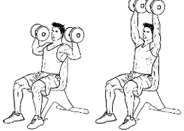 Easy free weights work out for beginners