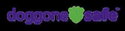 DGS_Logo_090H_4C_png.png