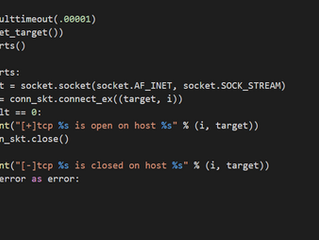 Building A Simple Python Port Scanner