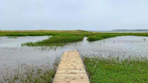 High Tide over the Boardwalk - Wellfleet