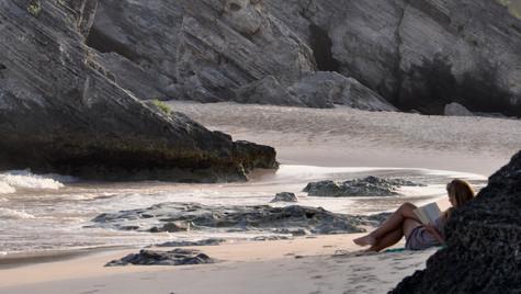 Bermudian Beach Dwellers (August 2014)