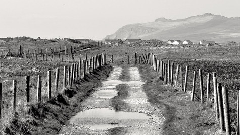 A Road In Dingle, Ireland (April 2013)