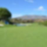 shropshire golf.png