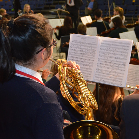 Trumpet, French Horn, Trombone, Tuba and lessons on any of the Brass Band Instruments