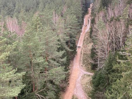 Hiking - Ogre Zilie Kalni Nature Park