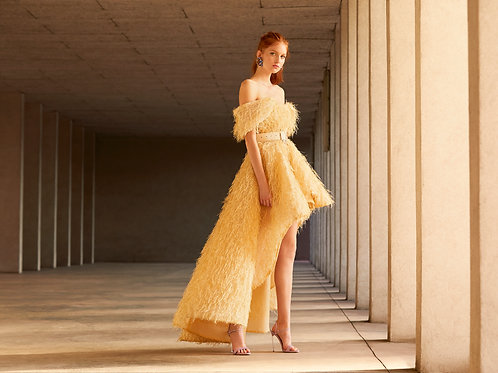 Gold Feathers Asymmetric Gown