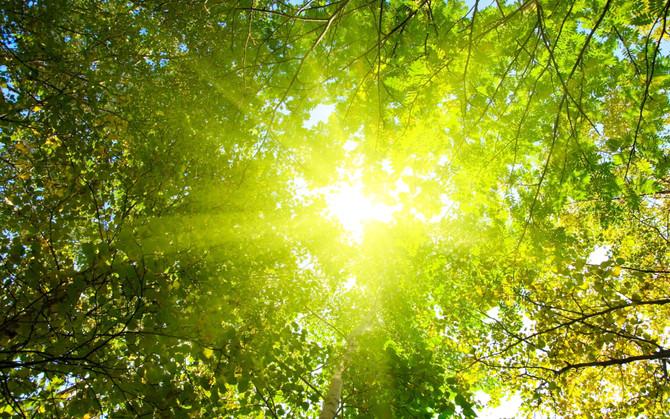 12 sept. Jordens skapande kärleksenergi och Kristallenergin. Öka din tilltro och energiinkoppling.