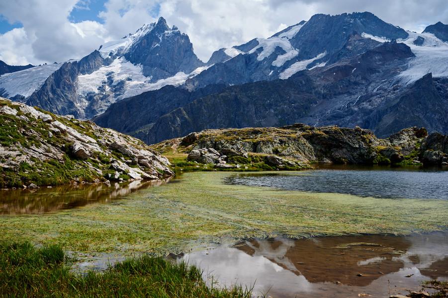La Meije (3984M) from Lac Lerie