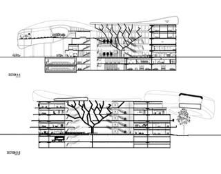 Children's Hospital Design| Sections
