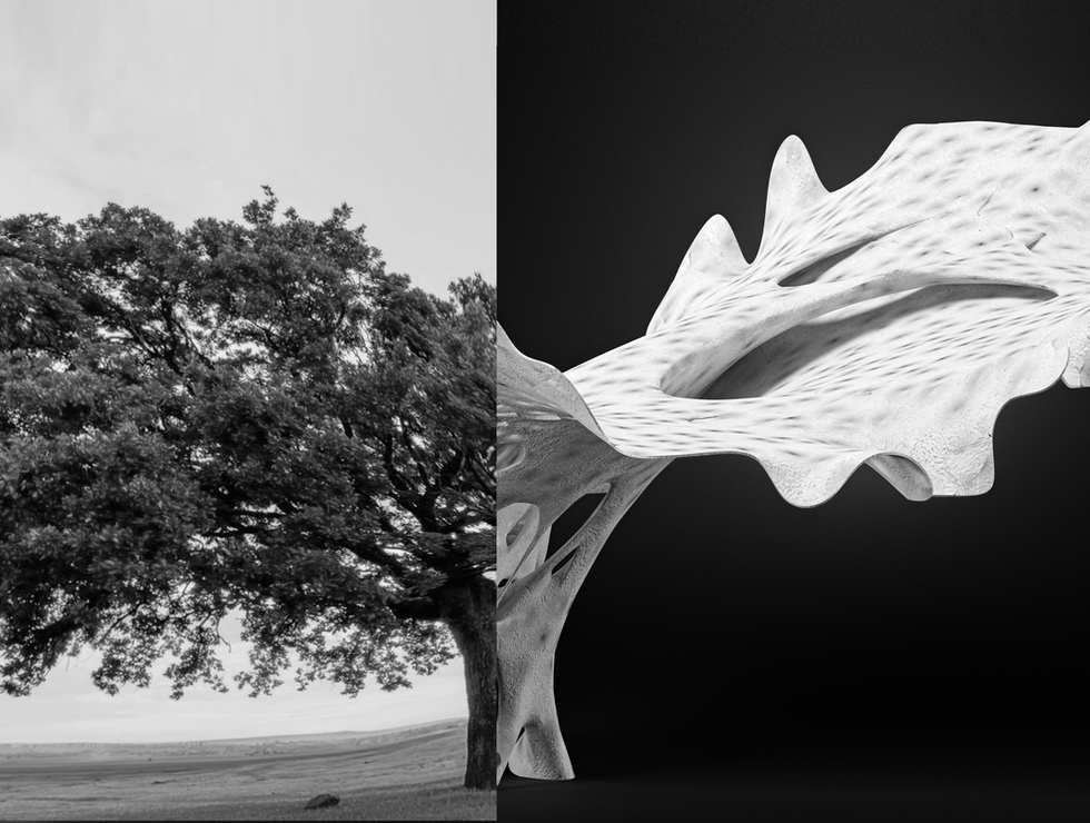 Petrified Tree Structure