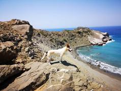 Agios pavlos south Crete