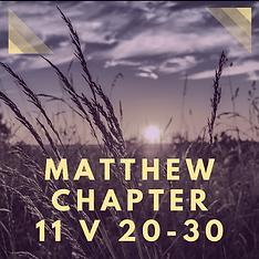 Matt 11b.png