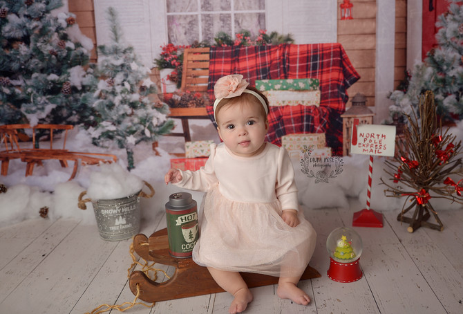 The Joy of Holiday Mini Sessions!