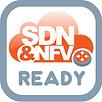SDN-NFV-Ready.png