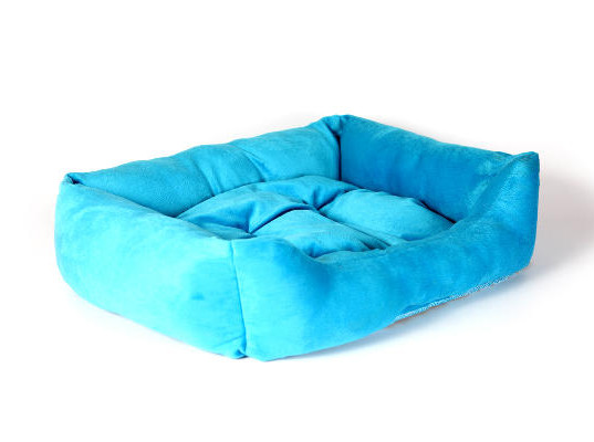 Blue Dog Bed 2