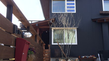 川西市大和西でシンボルツリーを植えました