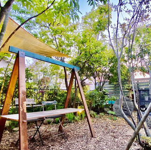 ゴールデンウィークの我が家の庭です。随分緑が増えてきて、真南の庭ですが、雑木の木