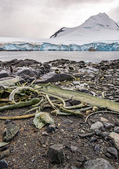 Whale bones, Jougla Point