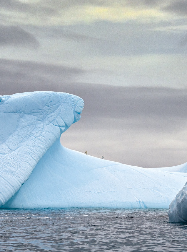 Two penguins on iceberg