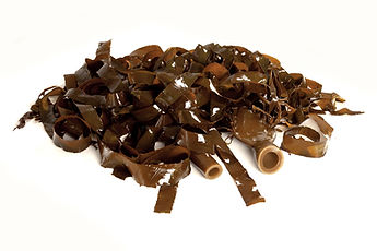 Kelp Suppliers South Africa