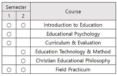 curriculum2eng.JPG