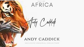 Andy Caddick.png