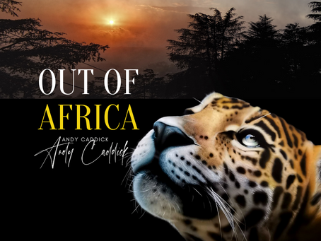 Exclusive Out of Africa collection by Andy Caddick.