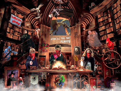 DIRTY HANS - HARRY POTTER GONE WILD Limited Edition Fine Art on paper