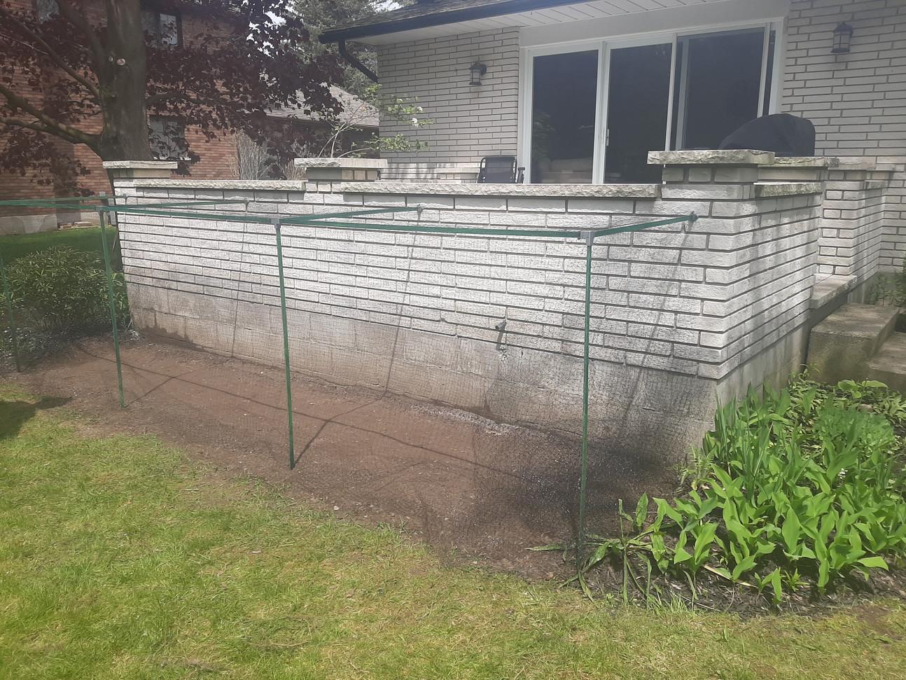Garden Frame